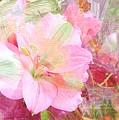 Pink Heaven by Jenny Revitz Soper