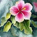 Pink Hibiscus by Marsha Elliott