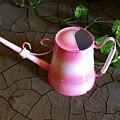 Pink Hope by Carlos Avila