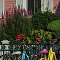 Pink House Bikes Cape May Nj by Terry DeLuco