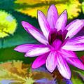 Pink Lotus Gallery  by Jeelan Clark