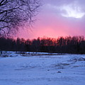 Pink Night by Allie Kneidl-Peppers