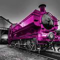 Pink Pannier  by Rob Hawkins