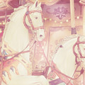 Pink Paris Carousel by Gigi Ebert