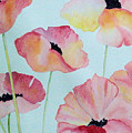 Pink Poppies by Elise Boam