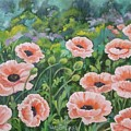 Pink Poppies by Val Stokes