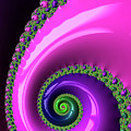 Pink Purple And Green Fractal Spiral by Matthias Hauser