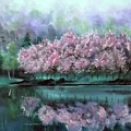 Pink Reflections In Japan by Derek Rutt