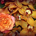 Pink Rose And Yellow Orchids by Dora Sofia Caputo Photographic Design and Fine Art