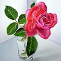 Pink Rose by Irina Sztukowski