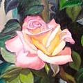 Pink Rose by Madeleine Prochazka