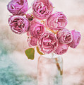 Pink Roses Beauty by Alenka Krek