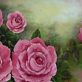 Pink Roses by Joni McPherson
