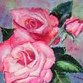 Pink Roses by Saga Sabin