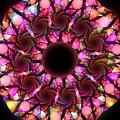 Pink Round by Elena Riim