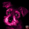 Pink Salt And Pepper Schnauzer Puppy 7206 F by James Ahn