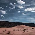 Pink Sand Dunes Np by Erika Fawcett