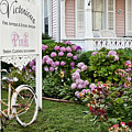 Pink Shop Cape May by John Greim