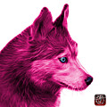 Pink Siberian Husky Art - 6048 - Wb by James Ahn