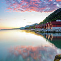 Pink Sunset Over A Lagoon In Norway by Todor Nikolov