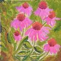 Pink Sunshine by Margaret G Calenda