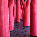 Pink Trees Palais Des Congres Montreal City by Pierre Leclerc Photography