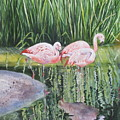 Pink Trio by Mary McCullah