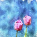 Pink Tulips by Jamie Holbrook