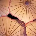 Pink Umbrellas by Anna Lucas