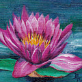 Pink Water Lily Original Painting by Brenda Thour