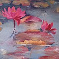 Pink Waterlilies by Vali Irina Ciobanu