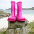 Pink Wellies by Smart Aviation