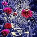 Pink Zinnia's Against A Silver Background by Debra Lynch
