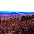 Pinnacle Valley by Tom Herrin
