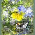Pintail Pond by Chuck Brittenham