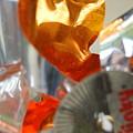 Pinwheel by Jame Hayes