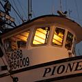 Pioneer by Alasdair Turner