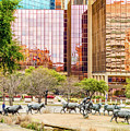 Pioneer Plaza Dallas Texas by Erich Grant