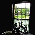 Pioneer Window by Ian  MacDonald