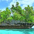Pirate Ship Cay by Dominic Piperata