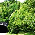 Pisgah Tunnel by Patricia Motley