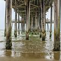 Pismo Beach Pier by Starr Shepherd