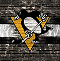 Pittsburgh Penguins Nhl Hockey by Nicholas Legault