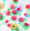 Pixie Flowers by Tina Storey