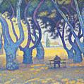 Place Des Lices St Tropez by Paul Signac