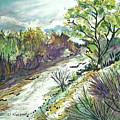Placerita Creek 3 by Olga Kaczmar