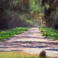 Plantation Road South Carolina by Gary Nelson
