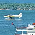 Plane Coming Into Friday Harbor On San Juan Island, Washington by Ruth Hager