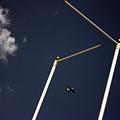 Plane Goal by Jez C Self