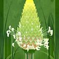 Plantain Buckhorn Print by Garth Glazier